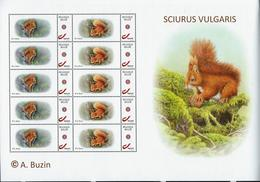 Ecureuils - Sciurus Vulgaris  Feuille Complète  De 5 Paires + Illustration à Droite (timbre (1) Belgique - 1985-.. Birds (Buzin)