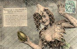 Exposition De Gallinacés Section Des Poules Femme Oeuf Doré éditeur Bergeret état Voir Scan - Ohne Zuordnung