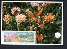 CARTE MAXIMUM -- SALON PHILATELIQUE Du TIMBRE  PARIS  2004  --LISA  0,50 - Maximum Cards