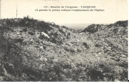 D55 - VAUQUOIS - A GAUCHE LE POTEAU INDIQUE L'EMPLACEMENT DE L'EGLISE - BATAILLE DE L'ARGONNE - Autres Communes