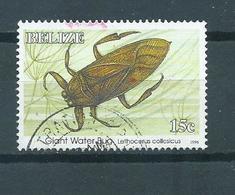 1996 Belize Insects Used/gebruikt/oblitere - Belize (1973-...)