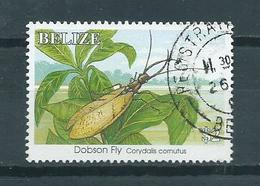 1995 Belize Insects $2 Used/gebruikt/oblitere - Belize (1973-...)