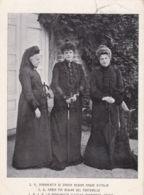1909 VISANO Ottagonale Collettoria (23.12) Su Cartolina Rifilata In Basso (S,A.  Margherita Di Savoia, Maria Pia, Clotil - Storia Postale