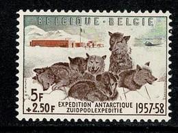 Belg. 1957 OBP/COB 1030** MNH Zuidpoolexpeditie / Expédition Antarctique - Unused Stamps