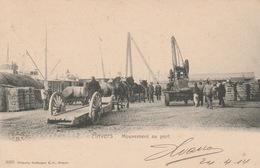 Haven Katoen Lossen 1904 ???? - Antwerpen