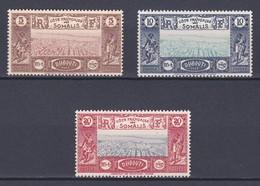 Cote Des Somalis Y&T  N ° 167 - 168 - 169    NEUF** Coté 9.25 Euros - Ongebruikt