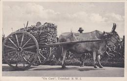 Trinidad B.W.I. Ox Cart ± 1935   986 - Trinidad