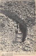 20-155 : LOCMARIAQUER . TUMULUS DE MANE HOËRK - Dolmen & Menhirs