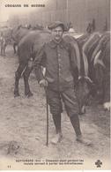 CROQUIS DE GUERRE Septembre 1914 Chasseur Alpin Gardant Les Mulets Servant à Porter Les Mitrailleuses - Rhône-Alpes