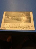 Expédition Antarctique Charcot 1903-1905.-quelques Pingouins. Carte écrite Et Signée Par J.B. Charcot. - Uccelli