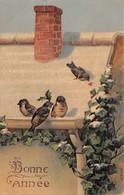 CPA Fantaisie  Gaufrée - Bonne Année - Oiseaux - Nouvel An