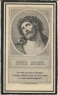 DP. PHILOMENE PIETERS ° LEDE (AALST) 1849 + MOORSEELE 1926 - Religión & Esoterismo