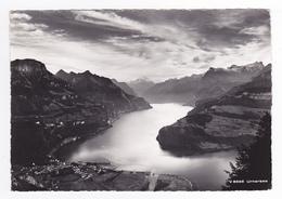 Suisse Schwyz Urnersee N°V 8566 Vue Aérienne - SZ Schwyz