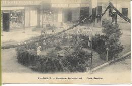 CHAROLLES  Concours Agricole 1909 Place Baudinot - Charolles