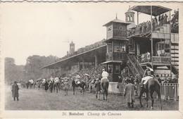 Watermael - Boitsfort  ,  Champ De Courses ,( Bruxelles ) Cheval , Jockey , Course , Concour Hippique - Watermael-Boitsfort - Watermaal-Bosvoorde