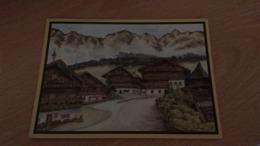 CSM - ALPBACH - Österreich