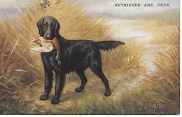 Chien De Chasse, Jagdhund, Flatcoated Retriever, Canard, Duck, Ente, Hunting Dog, Chien, Dog, Hund - Perros