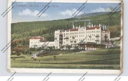 SUDETEN - FREIWALDAU / JESENIK, Kurhaus Altvater, Kl. Mängel - Sudeten