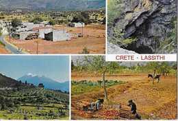 CP CRETE -LASSITHI - Greece