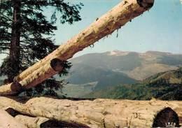 Les Hautes Vosges Vue Sur Le Grand Ballon 1979 CPM Ou CPSM - France