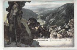 Riesengebirge - Blick V.d. Schneekoppe In Den Riesengrund - 1910 - Schlesien