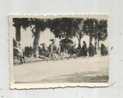 Photographie, Issue D'un Album,mon Service Militaire En Tunisie, SEDJOUNI ,caravane De Chameaux ,1947 - Luoghi