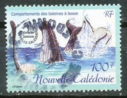 NOUVELLE CALEDONIE - Nr 845 - 2001 -  Oblitere - Nuova Caledonia