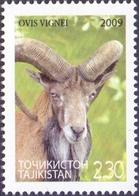 Tajikistan - Ladakh Urial (Ovis Orientalis Vignei), Stamp, MINT, 2009 - Selvaggina
