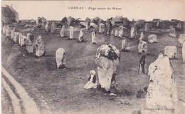 56-Carnac Alignement Du Ménec - Carnac