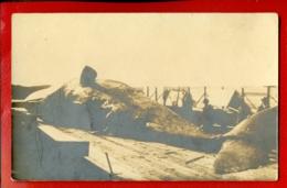 Dead Whale VINTAGE PHOTO POSTCARD 2035 - Cartoline