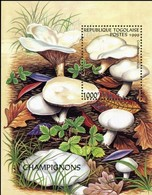 TOGO -   Champignon : Clitopilus Prunulus - Pilze