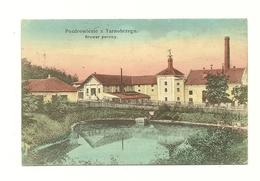 AK Tarnobrzeg - Detail - Brauerei - Um 1915 - Pologne