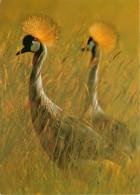 Animaux - Oiseaux - Grue Couronnée - Balearica Pavonina - Kronenkraniche - Crowned Crânes - Carte Neuve - Voir Scans Rec - Birds