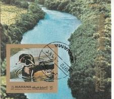 Bf. 181B Manama 1972 Birds Uccelli Anatre Duck Sheet Imperf. Used - Manama