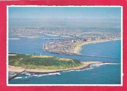 Modern Post Card Of Durban,Cape Town,South Africa,D48. - South Africa