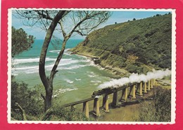 Modern Post Card Of Railway Bridge Over Kaaimans River,Cape,South Africa,D48. - South Africa