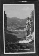 AK 0401  Blick Von Der Ruine Starhemberg Um 1937 - Neunkirchen