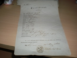 Certificat Passport  Temerin Sohajda Antal 1860 - Documents Historiques