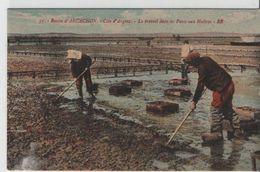 Bassin D'arcachon-côte D'Argent-Le Travail Dans Les Parcs Aux Huitres - Arcachon