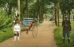SOUTH AFRICA  - Untiled.  Rickshaw Boy Etc. VG Ethnic - South Africa