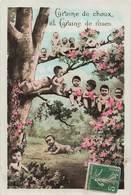 Bébé Bébés Cpa Carte Fantaisie Bébés Multiples Graine De Choux Et Graine De Roses Cpa - Bébés