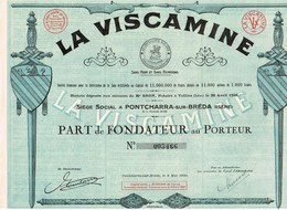 Titre Ancien - La Viscamine - Société Anonyme Pour La Fabrication De La Soie Artificielle -  Titre De 1930 - - Textiel