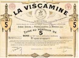 Titre Ancien - La Viscamine - Société Anonyme Pour La Fabrication De La Soie Artificielle -  Titre De 1929 - - Textiel