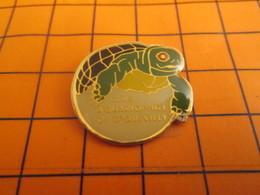 2319 PINS PIN'S / Beau Et Rare : Thème ANIMAUX / TORTUE CLUB AQUARIOPHILE DE GRAND QUEVILLY - Animali
