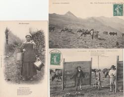 3 CPA:FILLE DE FERME SEAUX,UNE VACHERIE COL DE CABRE,HOMMES SUR LA MONTAGNE DU PARC (15) - Francia