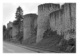 PARTHENAY - Les Fortifications Boulevard De La Meilleraye - Parthenay