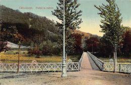 CALIMANESTI - Podul La Ostrov - Ed. Depozitul Universal Saraga. - Rumänien