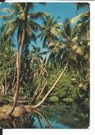 Lagoon On La Digue. Seychelles. De J. Malanny à Guy Dernoncourt à Boulogne Billancourt. - Seychelles