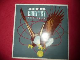 LP33 N°768 - BIG COUNTRY - THE SEER - COMPILATION 10 TITRES ROCK POP - Rock