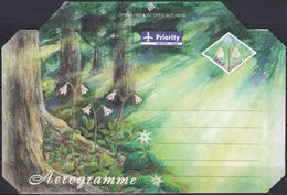 ALAND 1999 Brief Ganzsache Aerogramme Ungelaufen - Ålandinseln